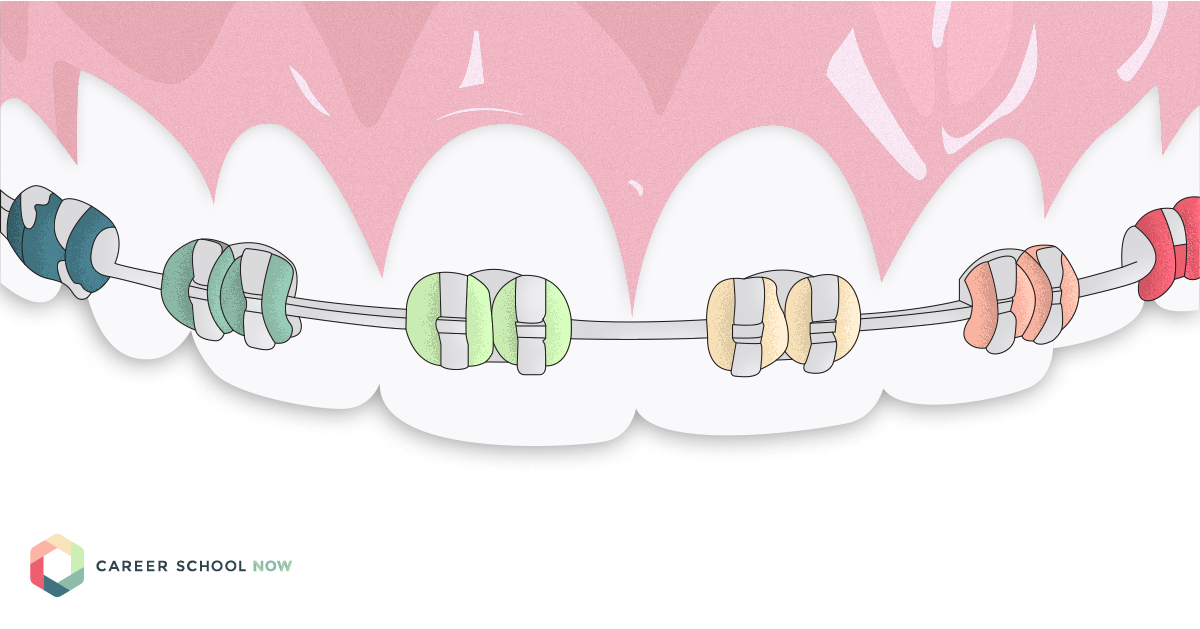learn about the different careers in the dental field