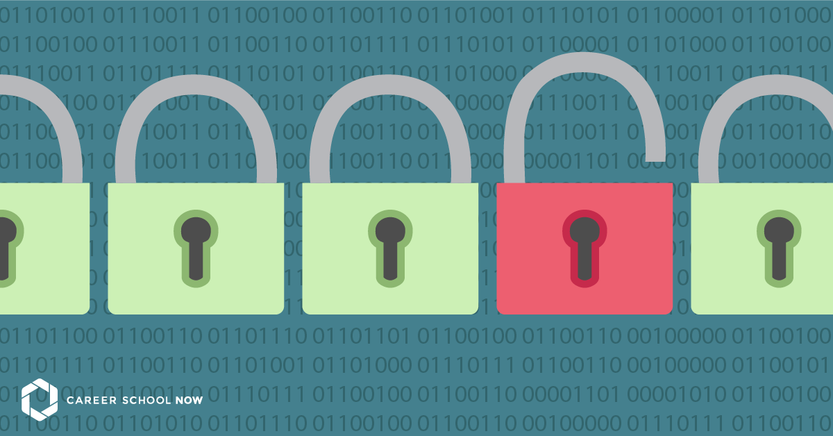 What does a cyber security professional do?